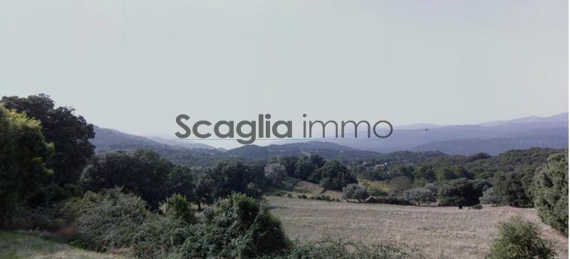 Achat Terrain En Corse Ajaccio Porticcio Propriano Etc